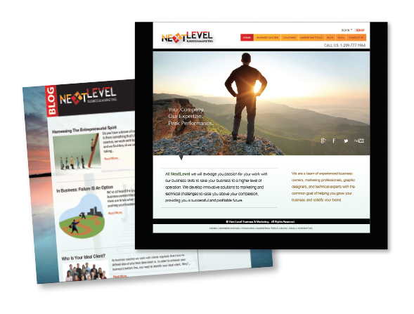 Next Level Business & Consulting Website Design